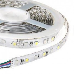 Enzo LED strip flex RGBW 5m 5050 24V IP65